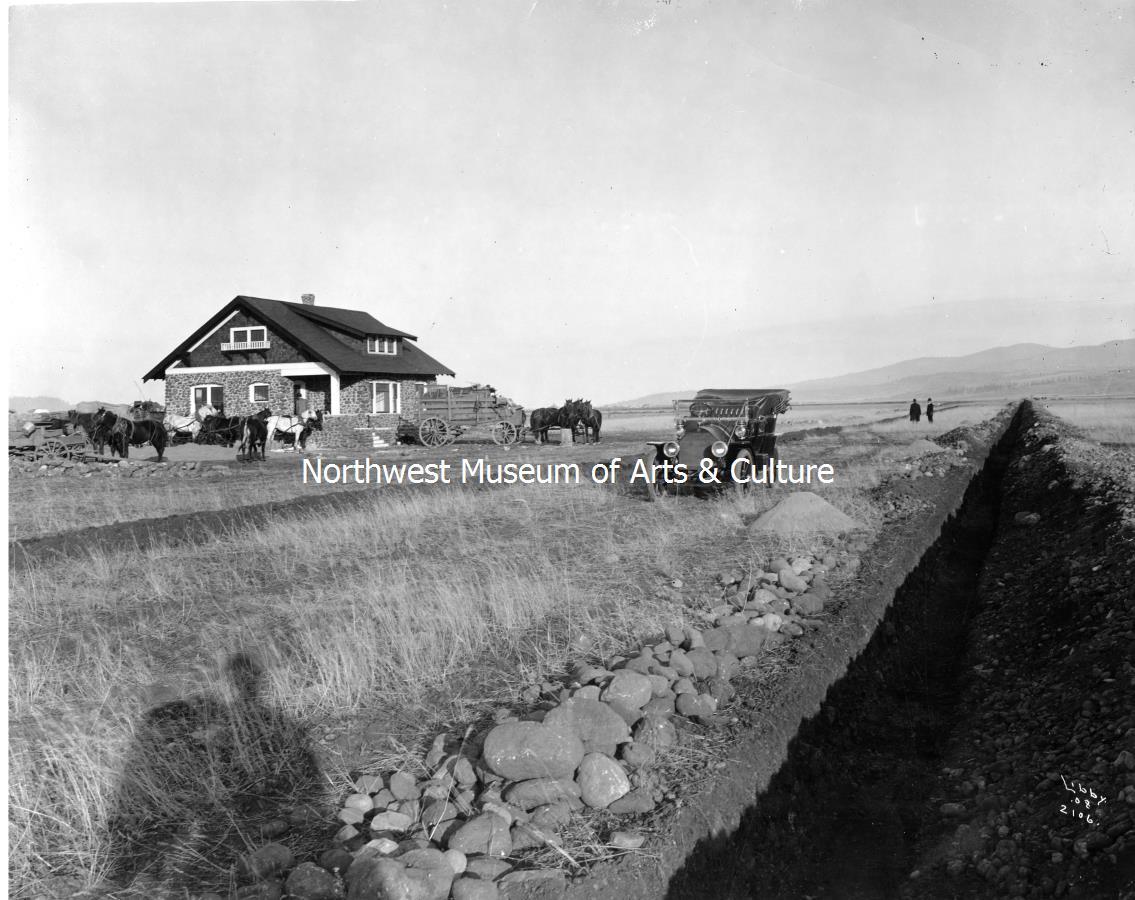 Cobblestone in Field