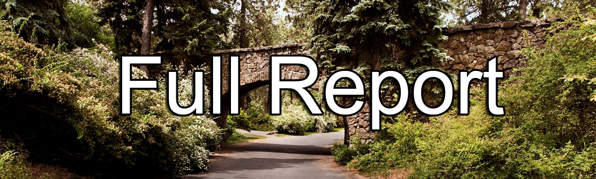 report-image